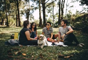 Top 5 Picnic Spots in Gainesville